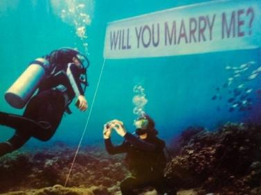 Scuba proposal